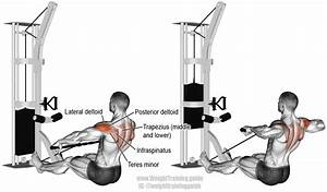 Cable Rear Delt Row Exercise Instructions And Video