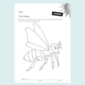 * lernkarten zu den formen von be: Ich-kann-schon-Blätter Jahreszeiten: 44 Kopiervorlagen für's Portfolio Die Praxisreihe für Kiga ...