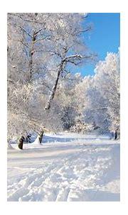 68+ Snow Desktop Wallpapers on WallpaperPlay | Winter ...