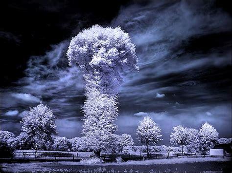Ответы выделяет ли снег тепло в виде инфракрасного излучения?.