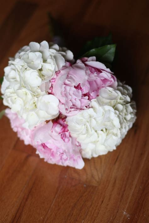 1000 ideas about peonies and hydrangeas on pinterest