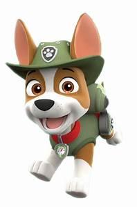 Paw Patrol Alle Hunde : tracker paw patrol deutsch wiki fandom powered by wikia ~ Watch28wear.com Haus und Dekorationen
