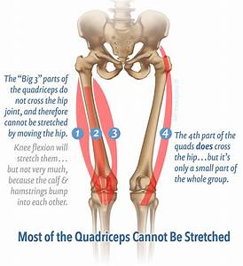 Massage For Thigh Pain  Quadriceps