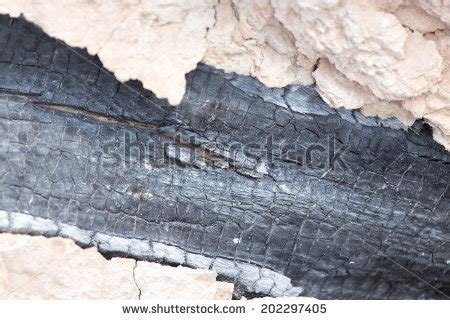 Chiminea Coal by Chiminea Stock Photos Images Pictures