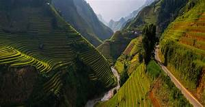 Rice Fields Wallpapers High Quality | Download Free