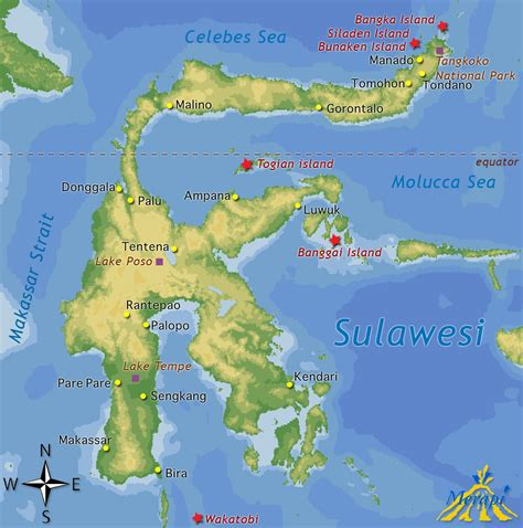 tours sulawesi  trips sulawesi merapi  travel