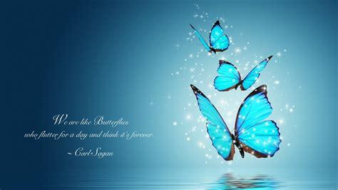 carl sagan quote full hd wallpaper  background image