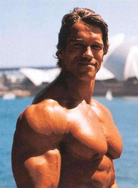 arnold bodybuilding pictures wallpapers  wallpapers