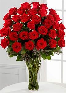 36 Stems Red Rose Arrangement - Flower Co