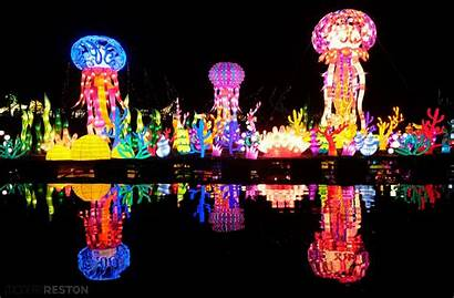 Lantern Festival Chinese Lights Ever Festivals Holiday