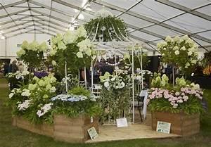 Help Shrewsbury Flower Show win UK's Favourite Flower and ...