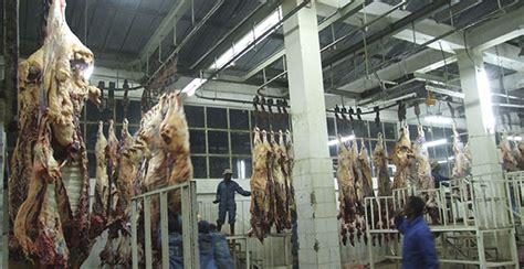 Ethiopians Released In Uae Spoiled Meat Saga