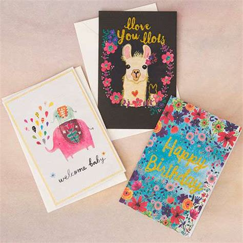 Shop Standard 25 In X Cards Greeting Cards From Natural Life Natural Life