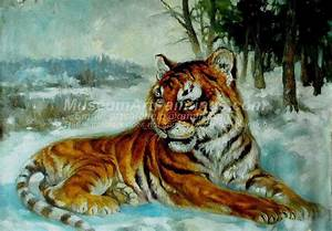 Tiger Oil Paintings 012