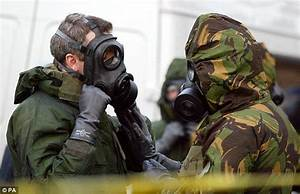 British troops carrying gas masks are sent to Iraq | Daily ...