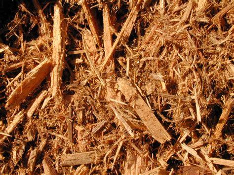 what is mulching mulch