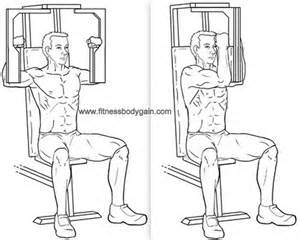 pec deck chest flies workout upper body pinterest