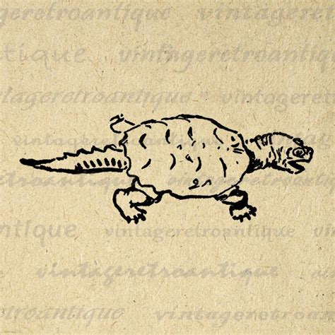 Snapping Turtle Printable Graphic Digital by ...