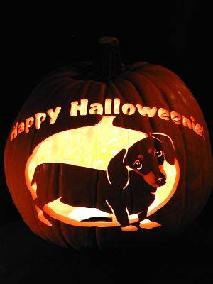 174 Best Jack O Lanterns Images On Pinterest Carving