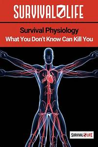 Survival Physiology  What You Don U0026 39 T Know Can Kill You