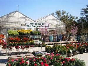 About the garden center garden center nursery san antonio for The garden center