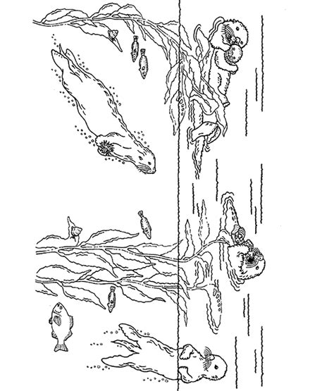 Otter Kleurplaat by Otter Coloring Pages And Print For Free