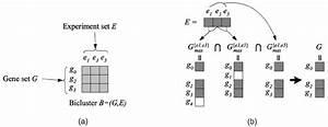 Relationship Between G And E In A Q-bicluster B 1 U20444  U00f0 G  E  U00de