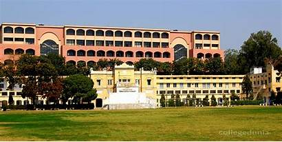 College Dav Hoshiarpur