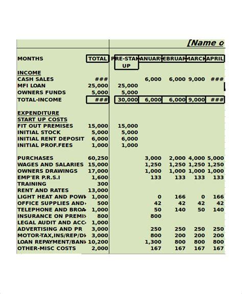 cash budget template
