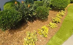 Vorgarten Gestalten Rindenmulch : vorgarten mit rindenmulch so dekorieren sie ihn sch n ~ Eleganceandgraceweddings.com Haus und Dekorationen