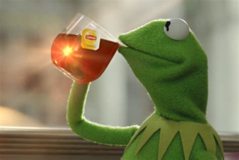 Kermit Tea Memes - answer where did the kermit but that s none of my business meme really came from buihe