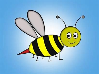 Draw Bee Cartoon Abelha Step Desenho Stinger