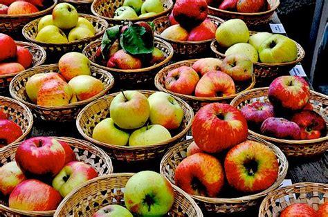 Botanischer Garten München Markt by Botanischer Garten Veranstaltet Einen Herbstlichen Markt