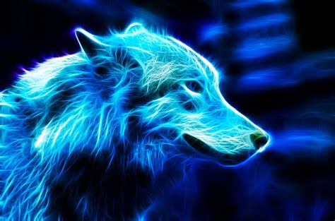 Blue And Purple Wolf Wallpaper by 109 Deviantart Blue Blue Wolf By
