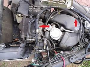 150cc Scooter Vacuum Line Diagram  Parts  Wiring Diagram Images