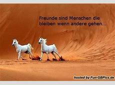 Freunde Sprüche Gaestebuchbild Facebook BilderGB Bilder