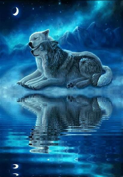 Wolf Spirit Animal Moon Fantasy Wolves Couple