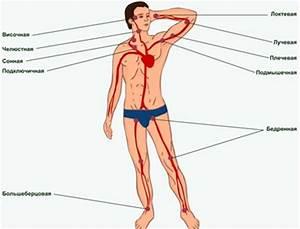 Метод массажа от простатита
