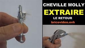 Cheville Pour Carreau De Platre : extraire une cheville molly d 39 un mur placo ba13 plaque de ~ Dailycaller-alerts.com Idées de Décoration