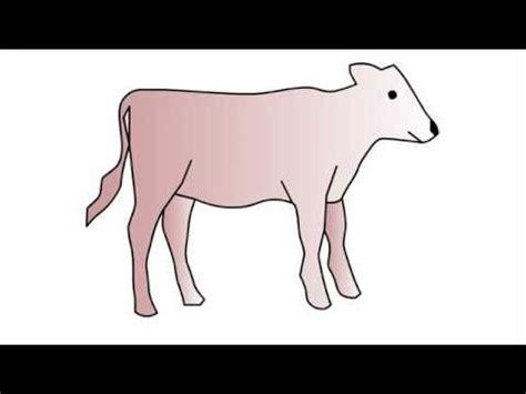 calf drawing    ayoqqorg