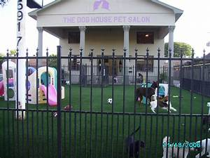 photo gallery artificial grass k9grass by foreverlawn With the dog house pet salon