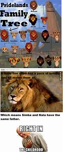 The Lion King family tree [Fix] - 9GAG