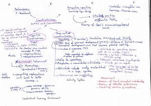 Compare And Contrast Piaget And Vygotsky Essay