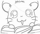 Coloring Hamtaro Ham Printable Popular Library Clipart Line sketch template