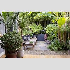 So Verwandeln Sie Ihren Kleinen Stadtgarten In Eine