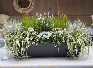 Kübel Bepflanzen Winterhart : die k bel und balkon gut stehen blumenk sten ~ Michelbontemps.com Haus und Dekorationen