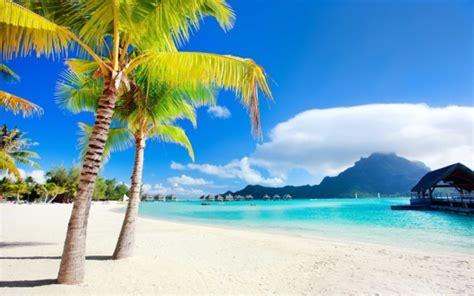 imagenes  paisajes de verano sol palmeras  playa