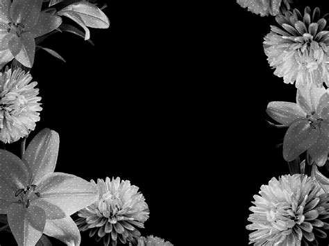 Black And White Animated Wallpapers - white flowers glitter image white flowers backgrounds