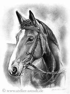 Bild Malen Lassen : bild pferdeportrait malen lassen malerei von britta arends weinrich bei kunstnet ~ Sanjose-hotels-ca.com Haus und Dekorationen