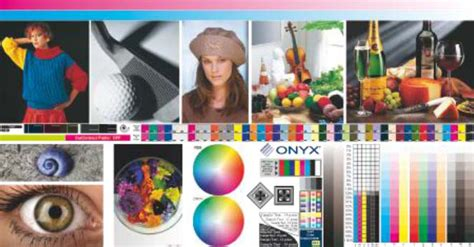 hp designjet    printer series color